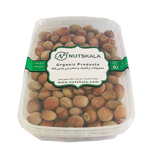 فندق با پوست ناتس کالا خشکبار nutskala hazelnut wholesale nuts bazaar freshnutskernelo