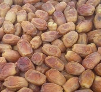 خرما زاهدی صادراتی ناتس کالا خشکبار nuts nutskala nutsbazaar zahidi dates
