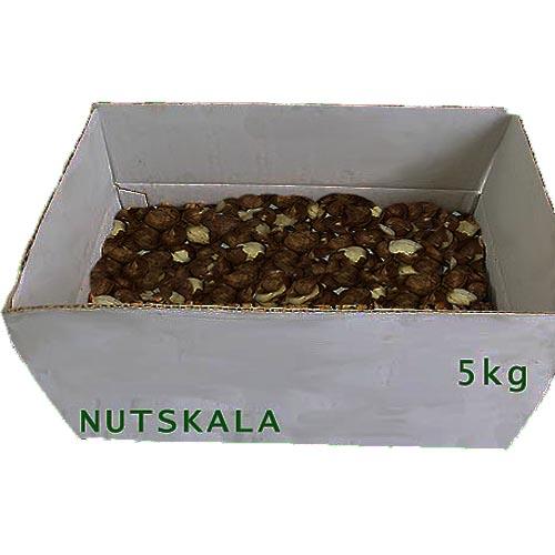 مغز فندق کرنلو ناتس کالا hazelnut nutskala kernelo nuts bazaar