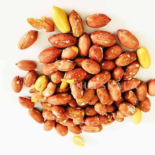 kernelo nutskala peanuts wholesale بادام زمینی ناتس کالا کرنلو nutsbazaar