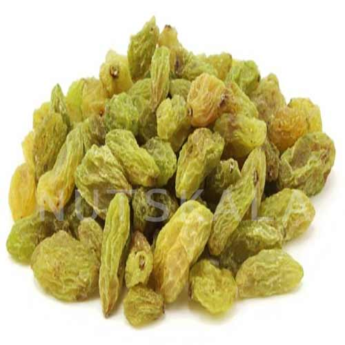 kernelo nutskala green raisin wholesale