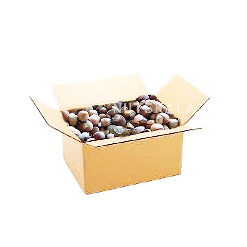 مغز فندق عمده کرنلو ناتس کالا hazelnut nutskala kernelo nuts bazaar