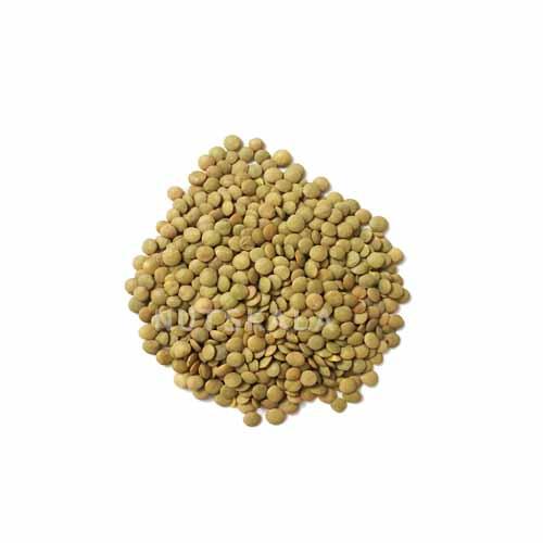 عدس کرنلو ناتس کالا عمده lentil wholesale بازار price bazaar